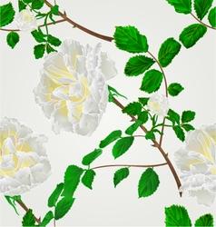 Seamless texture rose white flower stem vector
