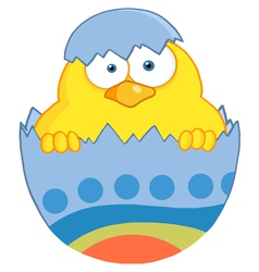 Yellow Easter Chick In A Blue Shell vector image vector image