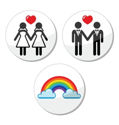 Gay lesbian marriage rainbow icons set vector image