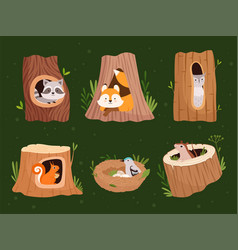Animals hollow wood forest trees with holes vector