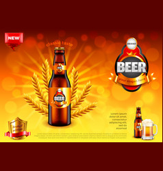 beer ads bottle and wheats on gold bokeh vector image