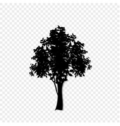 Black silhouette of leafed tree icon isolated on vector