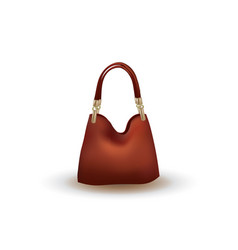 brown bag on white background vector image