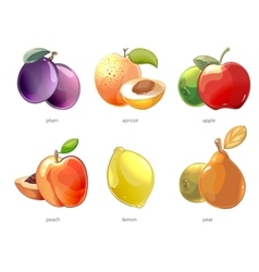 Cartoon fruits icons set vector image