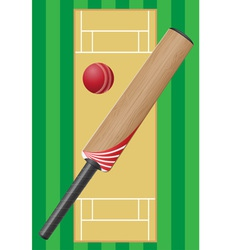 cricket 01 vector image