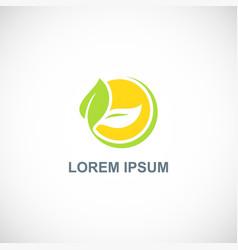 ecology green leaf organic logo vector image
