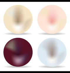 pearl set vector image vector image