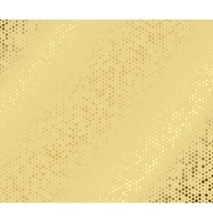 abstract metal gold hexagon with cells vector image