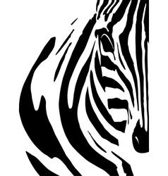 Artistic closeup portrait of a zebra - emphasized vector image