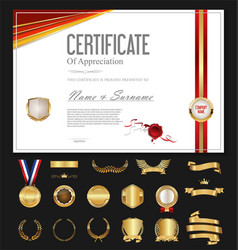 certificate or diploma retro vintage temlate with vector image