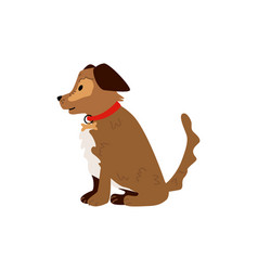 flat sitting dog pet icon vector image