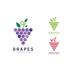 Grapes isolated logo icon vector