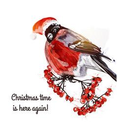 greeting card with bullfinch and rowan vector image