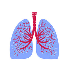 human lungs medicine in cartoon style lung vector image