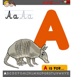 letter a with cartoon armadillo vector image