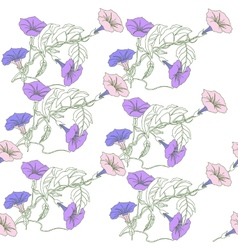 Seamless pattern with blue pink bindweed vector image