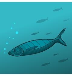 Shoal fish vector