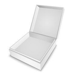 Gift Box White vector image vector image