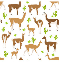 Camelids family collection guanaco graphic design vector