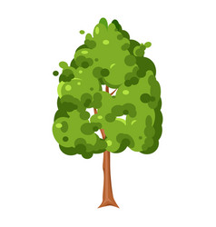 green tree symbol creative element for park vector image