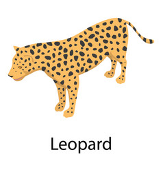 leopard icon isometric style vector image