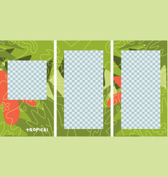 set tropical stories templates layout flat vector image