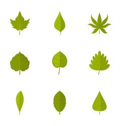 summer leaf icons set flat style vector image