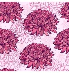 chrysanthemums vector image