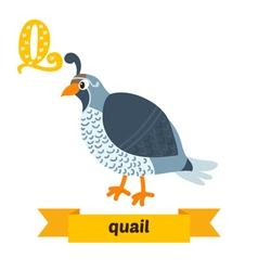 Quail Q letter Cute children animal alphabet in vector image