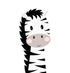 Cartoon cute zebra isolated on white background vector