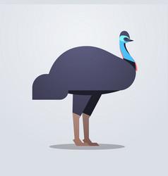 emu icon cute cartoon wild animal symbol vector image