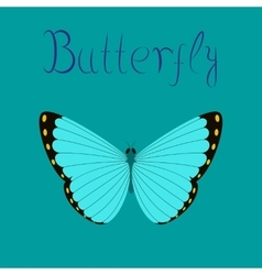 Flat on background insect butterfly vector