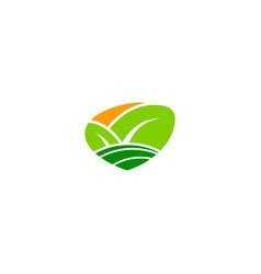 organic green leaf nature bio logo vector image