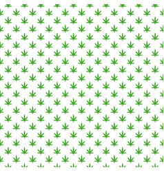 simple marijuana leaf hemp cannabis pattern with vector image
