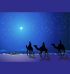 Three wise men go for the star of Bethlehem vector image
