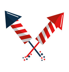 United states firework design vector
