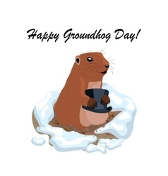 With cute groundhog holding vector
