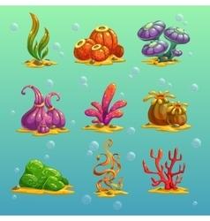 Algae vector image vector image