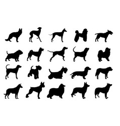 collection of dogs silhouette vector image