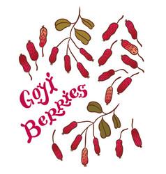 Superfood goji berries vector