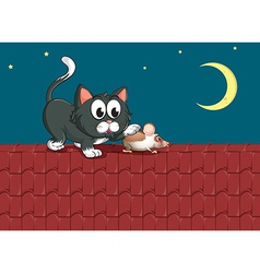 a cat and a mouse at rooftop vector image