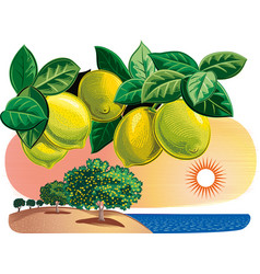 Branch with lemons in a landscape vector
