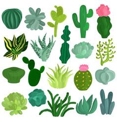 Cacti succulents plants flat set vector