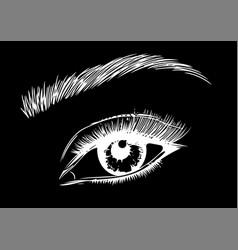 Eye on black background eyes art woman eye the vector