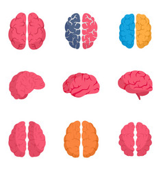 genius brain icon set flat style vector image
