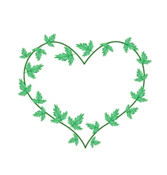 Green Ivy Leaves in A Beautiful Heart Shape vector image