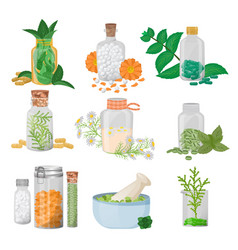Homeopathic pills in glass jars and vector