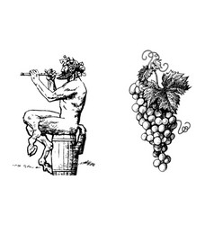 satyr on the barrel 0f wine playing the flute vector image