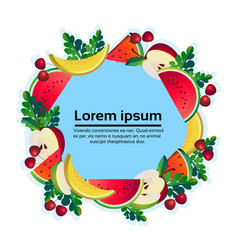 tropical fruits colorful circle copy space organic vector image
