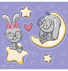 Cute Lovers rabbits vector image